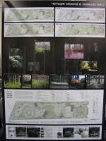 Четыре сезона в темном лесу (Мария Бодня