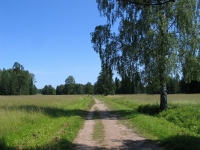 Павловск, Район Белая береза (арх. П. Гонзаго, 1801-1828)