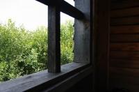 Дом над лесом. Анна Щетинина