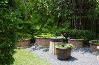 Водный садик