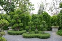 Сад топиаров