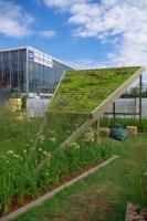 Сад «Шалаш с зеленой крышей», автор Пятакова Ольга