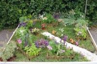 Целебный сад. Автор Сапельникова Мария
