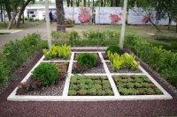 Сады начинающих «Крестики-нолики». Автор Сарафанова Даша