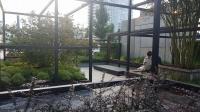 «Архитектура природы» Авторский коллектив компании «Дерево парк». Адрес Новый Арбат, 19-21