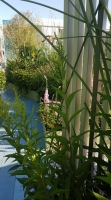 «Неглинка-сад» Наталья Шушлебина. Адрес Большая Сухаревская площадь (около метро «Сухаревская»)