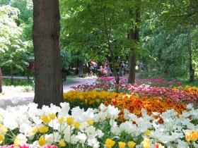 Весенний фестиваль цветов в «Аптекарском огороде» - весна 2013